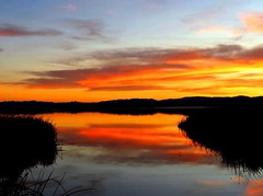 Sunset Heaven (moonjazz) Tags: california travel sunset sky orange lake color reflection nature clouds landscape photography perfect soft day time vivid peaceful creation swamp serenity wilderness february bliss conservancy sactuary flckr twilght preseve moonjazz