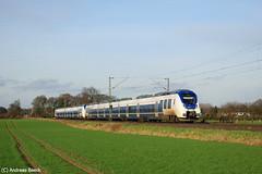 Bsinghoven, 06.02.16, 442 369 + 442 357 als RE7 nach Rheine (Andreas Beeck) Tags: national talent nrw krefeld express bombardier rheine meerbusch nx bsinghoven re7