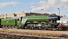 FLYING SCOTSMAN (P.J.S. PHOTOGRAPHY) Tags: