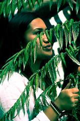 TPPA 2016-19 (domhartnett) Tags: newzealand democracy protest auckland aotearoa queenstreet skycity aoteasquare tpp tangatawhenua thisiswhatdemocracylookslike tppa tetiritiowaitangi thetreatyofwaitangi realchoice stoptpp tppanoway tranpacificpartnership itsourfuture noaltpp