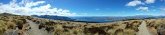 View from the Kepler Track. Te Anau on the lake to the right.