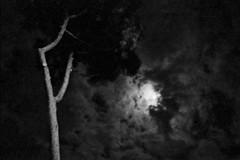 05 (without-a-body) Tags: sky blackandwhite bw black film night 35mm dark nikon hole fear f100 nikonf100 ilfordhp5 push hp5 analogue ilford bwphotography film35mm monohrome push3 analoguephotography