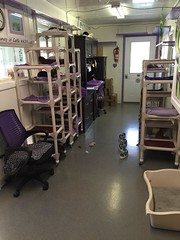 "The Purple Office • <a style=""font-size:0.8em;"" href=""http://www.flickr.com/photos/72892197@N03/25228003875/"" target=""_blank"">View on Flickr</a>"