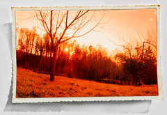 sunset (wolfgangfoto) Tags: old sunset color frame treatment wolfgangfoto
