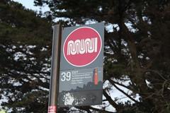 MUNI Bus stop at Coit Tower (busdude) Tags: bus tower san francisco railway busstop muni stop coittower coit municipal