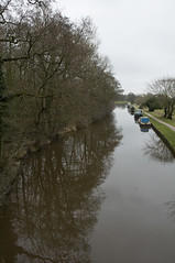 March 12th 2016 - Project 366 (Richard Amor Allan) Tags: trees reflection tree green water grass canal path stokeontrent barge pathway waterway canalboat barlaston project366