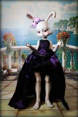 loonette1 (lauradavison) Tags: rabbit bunny art doll bjd resin anthro lillycat loonette cerisedolls