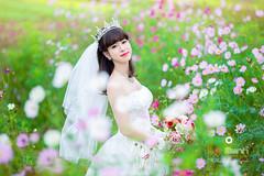 nh Ci p Ninh Bnh (Le Manh Studio / Photographer) Tags: wedding fashion ga studio tin photography la long photographer bokeh designer anh an mai le ao weddingdress bridal tam nh c hoa bnh l ninh ch ninhbinh cuoi o di manh hong hn bch h p chu tm ci vn sn phim trng vn vng cng cc o ng bng mnh st vin ng d yn thng trng lng vy mc ip x mch ui nhn gic qut lemanh i anhcuoidep aocuoilemanh aocuoininhbinh hevenlove