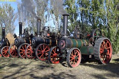 DS_TractionEninges_3_McLeansIsland_09April2016 (nzsteam) Tags: price train island traction engine railway scene steam engines locomotive boiler boilers mcleans sawmilling
