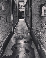 #earth #world #place #china #day #street # #outdoor #photographing #style #history #memory #water #shooting #photographer #residence #house #culture #blackandwhite #bw #memories #monochrome #living #life #vintage #time #wall #outdoors #iphoneography #ip (CalvinShoot) Tags: world life china old city light shadow blackandwhite bw house reflection brick history wet water monochrome stone wall painting square outdoors living alley waterdrop paint downtown photographer view place shanghai shot time outdoor earth walk memories culture documentary rusty style ground uptown age squareformat memory era record historical shooting times aging photographing humidity relic iphone histories reminiscene iphoneography instagramapp uploaded:by=instagram