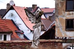 Engel der alten Fassaden (Wrzblog) Tags: friedhof cemetery angel engel marktheidenfeld