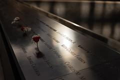 National September 11 Memorial & Museum (on Flickr Explore April 29th) (scuzzilla) Tags: new york city usa rose us nikon memorial flickr name united 911 attack terrorist plate 11 september explore states victims d600 explored