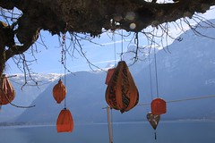 THEO9656 (harleyxxl) Tags: ostern lampion hallstatt hallstttersee