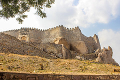 Golconda Fort [Day 94/365] (Manas Sahoo Photography) Tags: fort hyderabad golconda