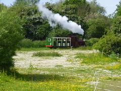 P1050697 (Hampton & Kempton Waterworks Railway.) Tags: loop devon galaday 2015 darent
