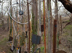 Hangers On (John Bense) Tags: trees art nature glass forest washingtondc woods junk wind outdoor things foliage windchimes hang chimes hung palisades glassforest