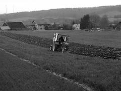 Traktor (jens.steinbeisser) Tags: bw film analog germany deutschland traktor feld sw niedersachsen mamiyam645 film:iso=400 film:brand=rollei developer:brand=adox adoxadonal rolleirpx400 film:name=rolleirpx400 developer:name=adoxadonal filmdev:recipe=10716