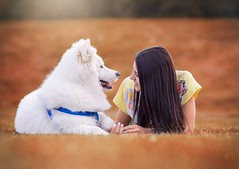 Daydreamers (PeterPetroff) Tags: woman dog cute male girl female afternoon samoyed young dreaming lovely retouch edit femine