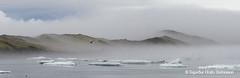 shs_n8_046024 pan (Stefnisson) Tags: panorama ice berg landscape iceland glacier iceberg gletscher glaciar sland icebergs jokulsarlon breen pana jkulsrln ghiacciaio jaki vatnajkull jkull jakar s gletsjer ln oka  glacir sjaki sjakar panrama stefnisson
