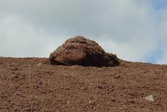 Plante Mars. (Dik) Tags:  dune images archives ni lien date srie espace sentiment sans lautre motion thme agrment indpendantes dike indiffrente