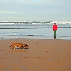 Meditando sobre el Ao Nuevo - Meditating on the New Year (nuska2008) Tags: blue dog baby water clouds landscape flickr gijn paz asturias playa newyear perro nubes nio olas mascota teckel horizonte select aonuevo tranquilidad serenidad playadesanlorenzo marcantbrico charcos pa orilladelmar nuska2008 olympussz30mr nanebotas harmonyoftheseas