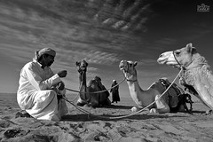 (Shyjith Kannur Photography) Tags: people arab camels aldhafra
