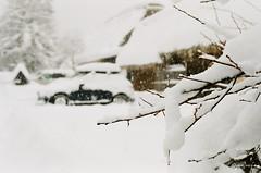 (panie18) Tags: snow film japan iso200 nikon super   fm3    shiragawago uxi efiniti