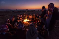 (Shyjith Kannur Photography) Tags: people festival culture abudhabi arab gathering tradition camels moring westernregion aldhafra