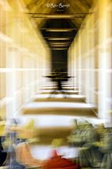 Roma. Street art. Aldo Rossi - Perugino by RoBoCoop with temporary visit by Lus57 silhouette (R come Rit@) Tags: urban italy streetart rome roma muro art silhouette wall architecture modern photography graffiti italia arte streetphotography wallart urbanart 400 walls graff modernarchitecture architettura graffitiart muri aldorossi perugino arteurbana architetturamoderna graffitirome italystreetart robocoop streetartitaly romegraffiti graffitiroma streetartrome streetartphotography romastreetart streetartroma romestreetart urbanartroma lus57 ritarestifo romeurbanart fifteenthcenturypainting pitturaquattrocentesca