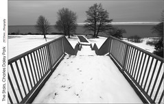 The Stairs, Charles Daley Park (jwvraets) Tags: winter blackandwhite bw monochrome stairs nikon gimp stcatharines lakeontario opensource beamsville nikkor1224mm charlesdaleypark d7100 rawtherapee regionaltownoflincoln