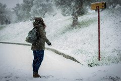 Persa nella neve (Daniela Miano) Tags: winter people italy snow cold animal neve freddo fiocchi