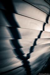 Wishbone Ghost (werhuntv) Tags: winter bw house silhouette suburban sony shingles ghost creepy neighborhood haunting f2 28 everyday siding mundane mediocre sonya7rii anthonywerhun sony185518