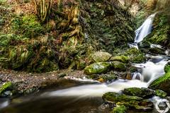 Ravennaschlucht (MSPhotography-Art) Tags: nature creek trekking river germany landscape deutschland waterfall wasserfall outdoor natur landschaft schwarzwald blackforest wandern wanderung badenwrttemberg