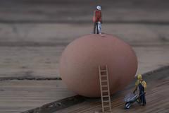 Breaking egg-7 (Rudaki1959 thanks for looking) Tags: food work toys still play egg stills