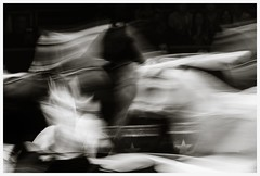 born to be wild (i.v.a.n.k.a) Tags: horses blackandwhite motion monochrome time sony events alpha ivana ivanahesova