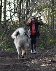 Stop the dog (pauldyus) Tags: malamute
