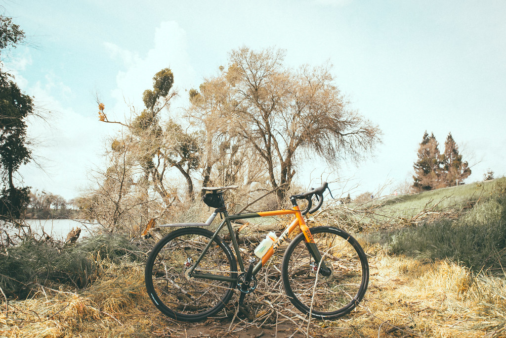 The World\'s Best Photos of cycling and marco - Flickr Hive Mind
