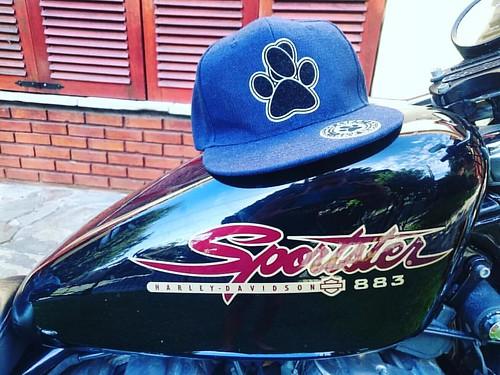 Arrancamos el día dando una vuelta bien ridah con @nicomagohuracan 🚀 #sportster #harley #harleydavidson #bike #motorbike #moto #DoggLife 💣