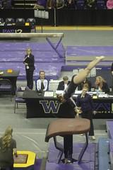 Stephanie Stowe vault (Susaluda) Tags: uw sports gold washington university purple huskies gymnastics dawgs