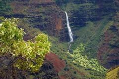 Waimea Canyon DSC_6813 (jim denny) Tags: green hawaii waterfall kauai lush