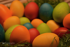 Happy Easter! (lg-photographic) Tags: blue light red orange color green rot colors yellow germany easter happy deutschland lights licht nikon egg indoor innen gelb eggs grün blau ostern farbe oval ei lichter farben frohe eier osterei flickrfriday ostereier d5200