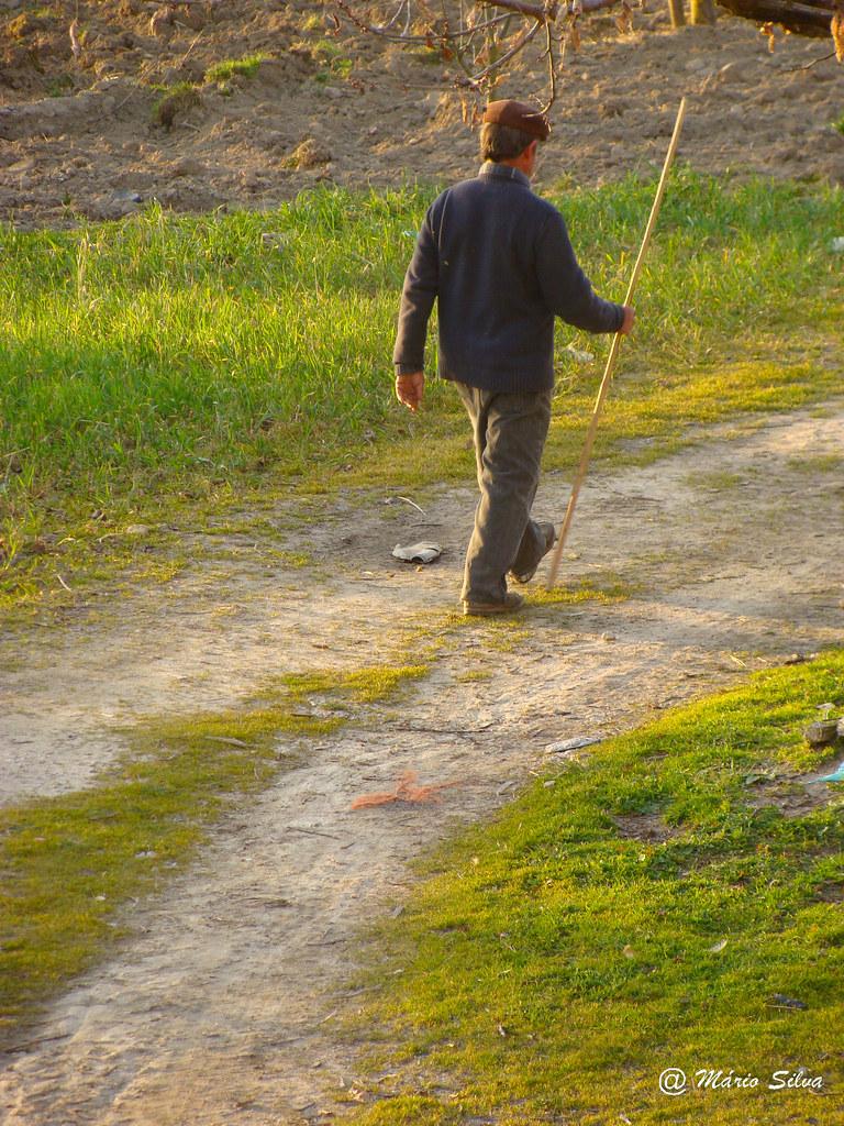Águas Frias (Chaves) - ... indo para o campo ...