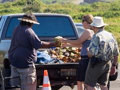fresh cocos (dolanh) Tags: hawaii maui fred coconuts nakaleleblowhole kahekilihighway