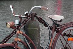 (r e z a se z e z a) Tags: bridge blue red orange black green bird water grass bicycle rock cat grey bay sweden glove torso sverige malm malmo resund twisting