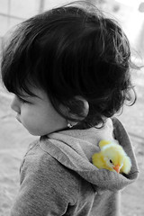 little friends <3 (*ameLIE*) Tags: family portrait people bw baby white black color cute love girl childhood animal yellow kids canon cutout out happy grey kid grigio colore child sweet cut famiglia bambini folk live happiness chick giallo lovely cuteness blacknwhite bianco nero amore animali bnw tender selective bimba pulcino selettivo