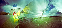 Sunshine and Daffodils (wheehamx) Tags: cycling pinhole blend ayrshire ardrossan