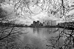 Battersea PS wide framed (George Turner) Tags: blackandwhite bw thames framed wideangle battersea development batterseapowerstation fujiacros100 heliar15mm r09 voigtlanderbessar3a 9elms