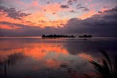 NIK_2884 - Colors on the Water (Arlo Guthrie) Tags: morning sunrise arloguthrie sebastianinlet indianriver nikond810 florida afsnikkor28300mmf3556gedvr indianriverlagoon