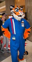 _DSC8324 (Acrufox) Tags: midwest furfest 2015 furry convention december hyatt regency ohare rosemont chicago illinois acrufox fursuit fursuiting mff2015