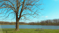 papoose lake. april 2016 (timp37) Tags: park lake tree table illinois picnic april palos papoose 2016